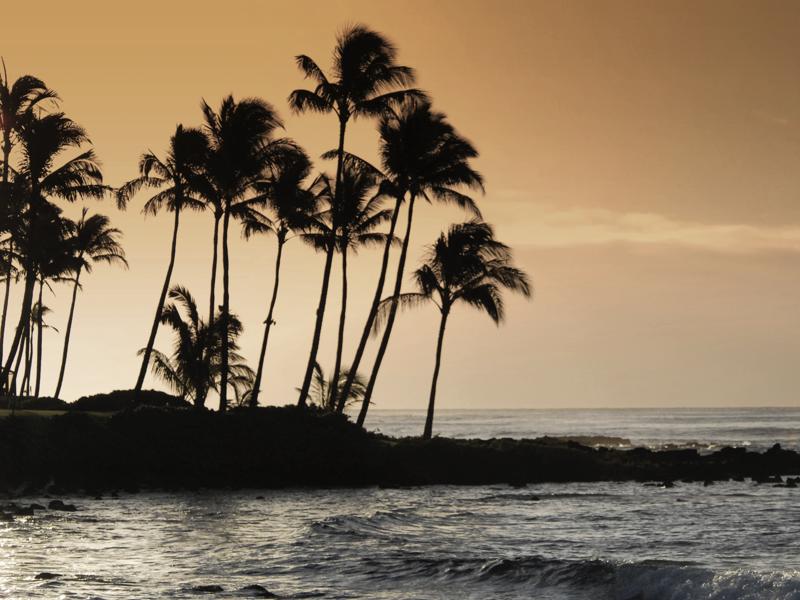 Moir Financial Honolulu Beach Photo